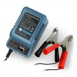 Gel battery charger AL 300pro 2V / 6V / 12V - 0.3A