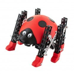 Remote controlled robot kit...