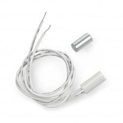 Magnetic sensor - reed...