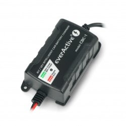 Battery charger, automatic car charger for 6V / 12V everActive
